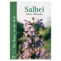 Salbei - Die Natur ist der Arzt